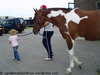 paard uit destal