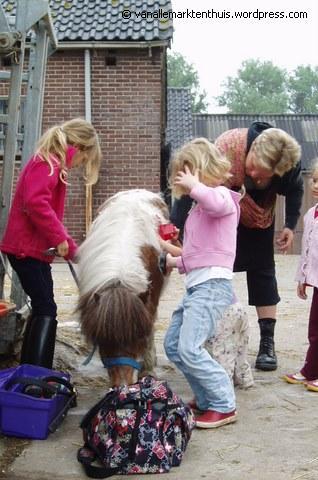 paardje poetsen