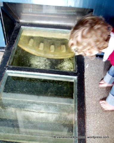 Kijken naar het water onder de molen